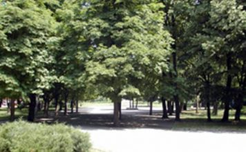 градски парк разград